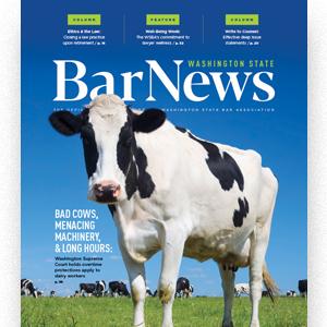April-May 2021 cover of Bar News