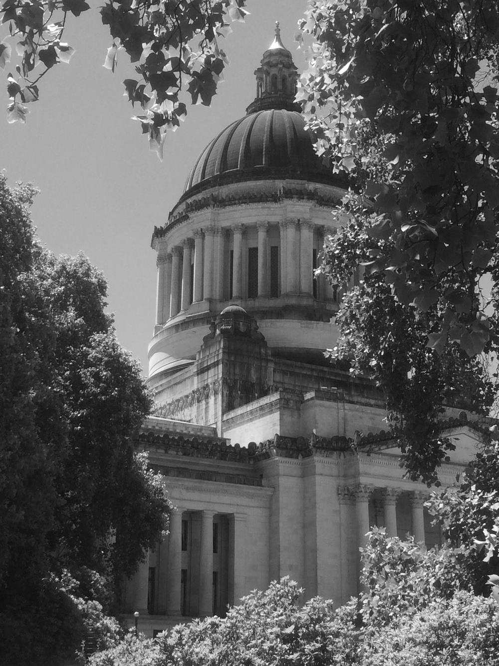 Capitol Dome - CAM